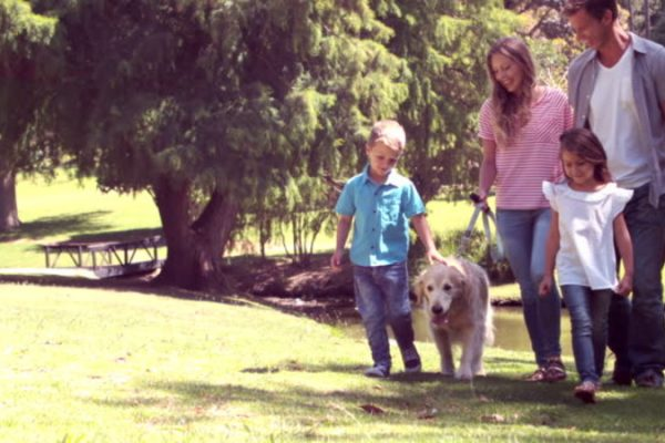 Family with dog in the park on a sunny day